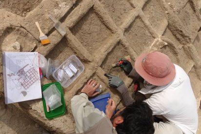 [VÍDEO] Hallazgo único de un jardín funerario en Egipto