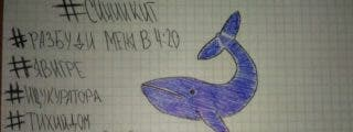 """El creador del juego de la 'ballena azul' quería """"limpiar la sociedad"""""""