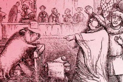 ¿Sabes por qué durante siglos en Europa hubo juicios contra cerdos y ratas?