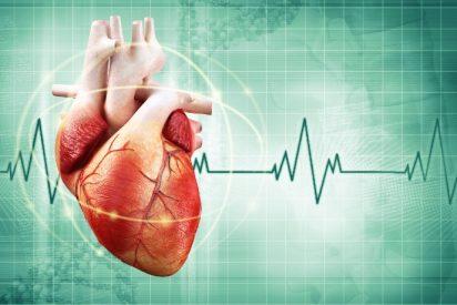 25 cosas que seguro no sabías sobre tu corazón