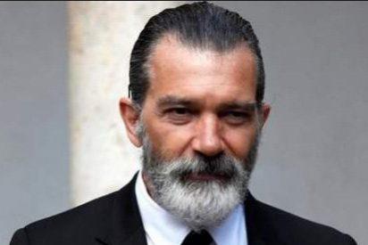 El acoso, los insultos y el trato humillante de los podemitas hacen huir a Antonio Banderas con el rabo entre las piernas