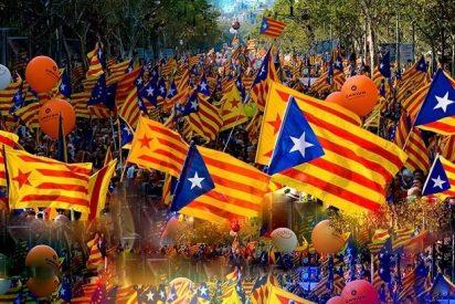 Napoleón, Franco y Trump ya han votado en la web del 'procés' independentista catalán