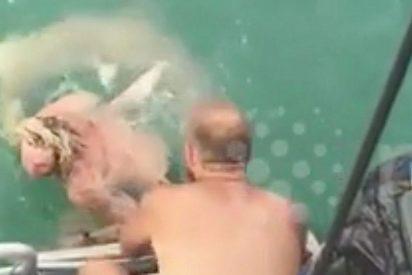 El vídeo del merluzo que intenta cabalgar sobre un tiburón... y acaba matando al animal