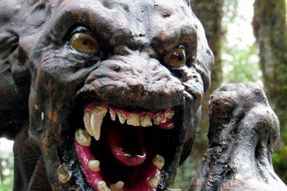 [VÍDEO] Un raro 'monstruo' genera sensación en la Red
