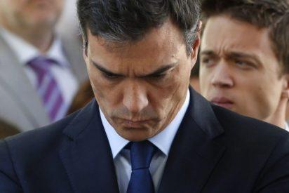 El demoledor dato que fulmina a Pedro Sánchez de cara a las primarias