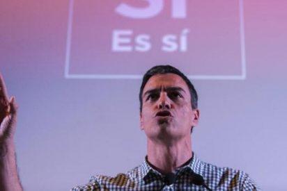 España se retrata políticamente