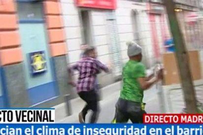 Inaudita agresión a pedrada limpia a un reportero de Telecinco en el distrito de la 'batasuna-millonaria' de Ahora Madrid