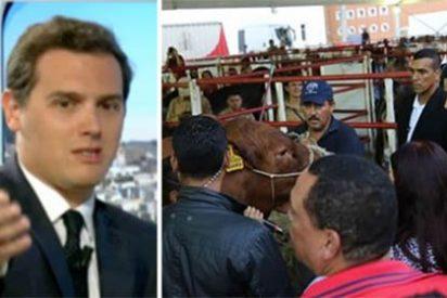 Rivera apalea al dictador Maduro, que habla más con las vacas que con la gente