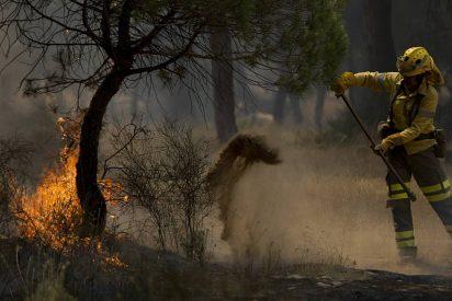 El incendio de Doñana aisla a 50.000 personas por el corte de una carretera