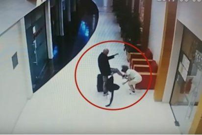 [VÍDEO] La mortal patada en la cara de un turista drogado a una empleada de hotel