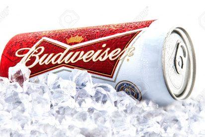 [VÍDEO] La disparatada fábrica china que produce latas falsas de cerveza Budweiser
