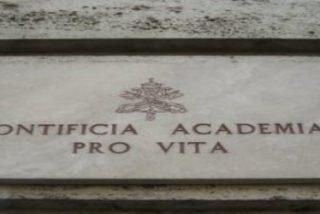 Dos españoles, a la nueva Pontificia Academia para la Vida