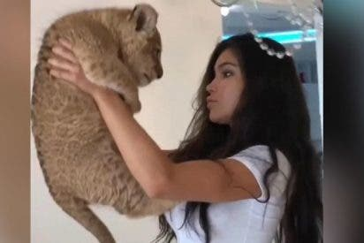 [VÍDEO] El momento 'Rey León' que le salió mal a esta modelo