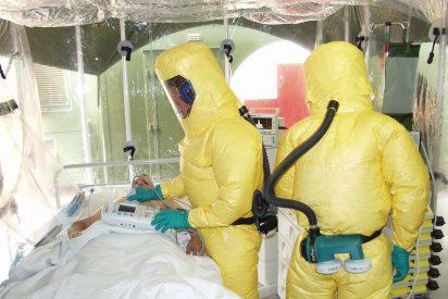 ¡ATENCIÓN!. Los expertos avisan de una nueva pandemia global que llegará desde América del Sur