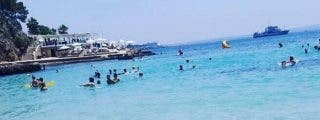 [VÍDEO] El tiburón herido que ha sembrado el pánico en varias playas de Mallorca