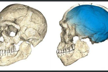 El 'Homo sapiens' es más antiguo de lo que creíamos