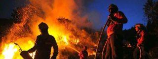 ¡Abrasados en sus coches! Las apocalípticas imágenes del incendio de Portugal a vista de dron