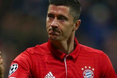 Lewandowski ya tiene destino 'Top' después de provocar un incendio en el Bayern de Múnich