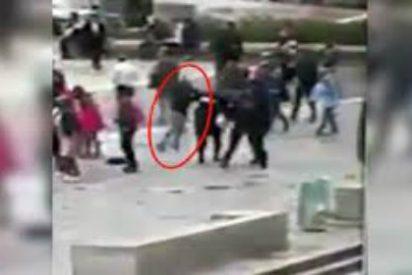 [VÍDEO] Los martillazos del islamista de Notre Dame que fue premiado por la UE