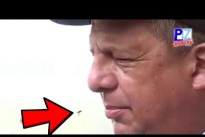 """[VÍDEO] """"Me la comí""""; El presidente de Costa Rica se traga una avispa en plena entrevista en directo"""