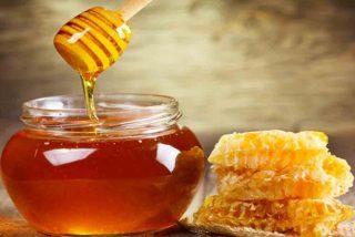 ¿Por qué la miel es eterna y no se estropea?