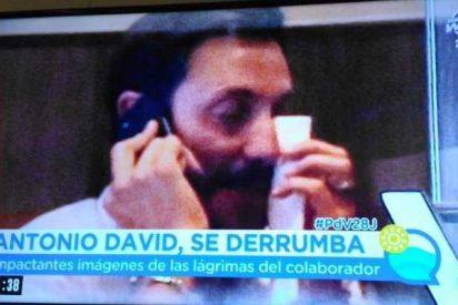 Antonio David Flores hundido, rompe a llorar en una cafetería