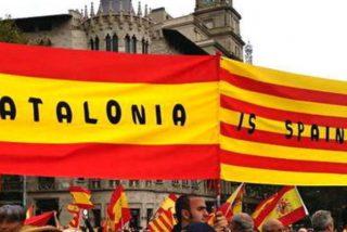 El Gobierno Rajoy anima a los ciudadanos catalanes a denunciar a los ayuntamientos secesionistas