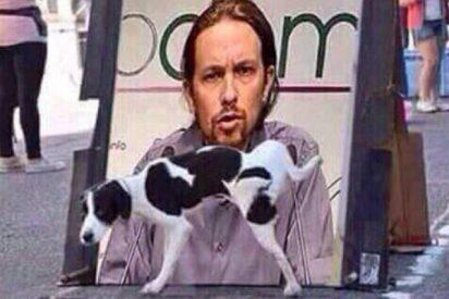 Día Mundial del Perro: Pablo Iglesias desata un cachondeo canino en las redes sociales
