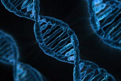 La soprendente carta a un niño de 12 años que anunciaba el hallazgo del ADN