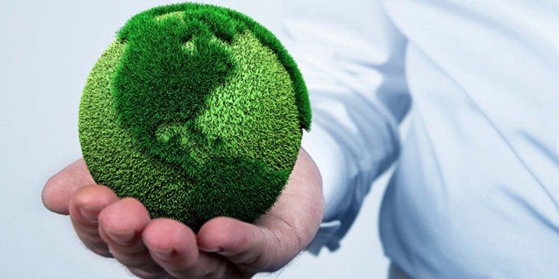 Parábola Medioambiental: El gilipollas políticamente correcto y la señora de la bolsa
