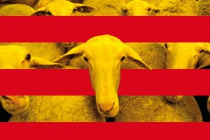 """Embajadas de Cataluña: """"¡Los españoles somos gilipollas!"""""""