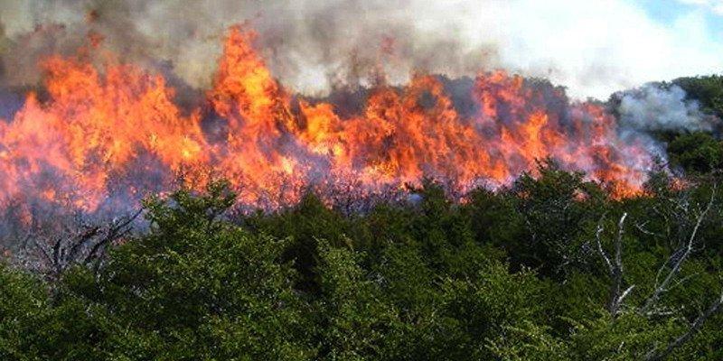 Los vecinos de Yeste culpan a los ecologistas del incendio que arrasa el parque natural