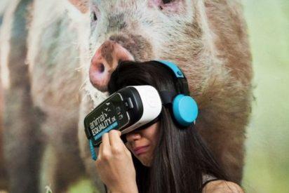 La realidad virtual es la gran herramienta de los defensores de los animales
