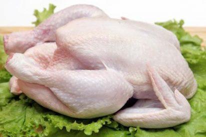 ¿Qué es el pollo clorado y por qué causa tanta bronca entre EEUU y la UE?