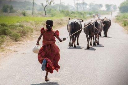 Una de cada tres niñas pobres se casa antes de la mayoría de edad