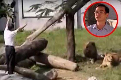 [VIDEO] Este hombre entra en la jaula de los leones y pasa esto…