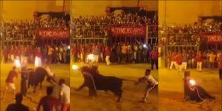 [VÍDEO] El toro que se 'suicida' en Valencia con los cuernos en llamas
