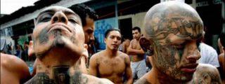 Obligados a comer la carne de su víctima para ser sicarios del narcocártel