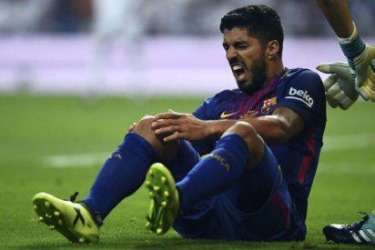 Festeja Samapaoli: Luis Suárez no jugará contra Argentina
