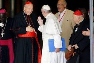 """Schönborn: """"Muchas veces los políticos católicos se sienten solos"""""""
