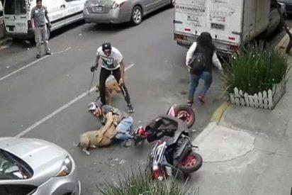 [VÍDEO] El hombre que se enfrentó a un pitbull al estilo lucha libre para salvar a su mascota