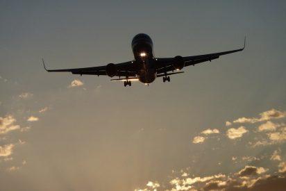 El gilipollas se mama, se autolesiona en pleno vuelo y obliga a que el avión haga un aterrizaje de emergencia