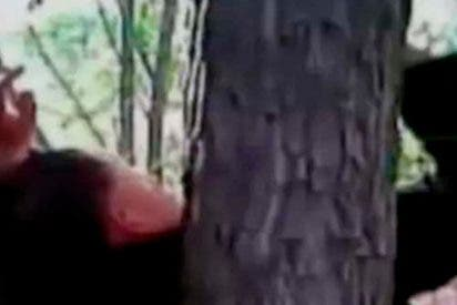 [VÍDEO] Crucifican a este hombre en un árbol por un negocio fallido