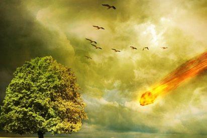 [VÍDEO] Estadounidense halla un meteorito en llamas en su patio trasero