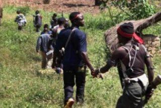 Tragedia en la República Centroafricana: medio centenar de muertos en Gambo y la misión saqueada