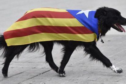 Cataluña: Alguien va a pagar esto muy caro