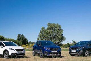 Peugeot 2008, 3008 y 5008, un sólido liderazgo SUV