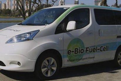 Bioetanol, un combustible ecológico con futuro