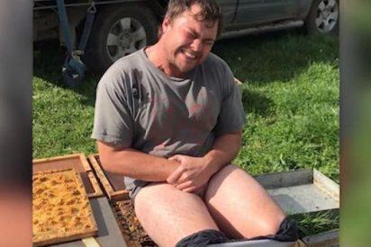 [VÍDEO] El idiota que apostó que podía sentarse sin pantalón en un panal de abejas y le pasó esto