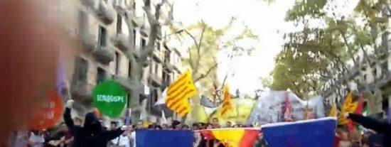 Con estas fachas queman los 'cachorros' de la CUP la bandera española
